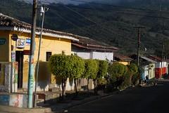 Apaneca