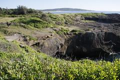 Catho Bay & Pom (wazonthehill) Tags: pom catherinehillbay