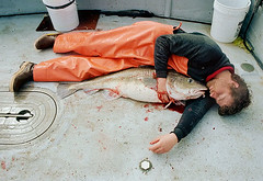 Loneliness (coreyfishes) Tags: ocean sea snow color ice dutch weather alaska danger harbor photo fishing fisherman king arnold picture wave crab corey catch kingcrab discovery harsh beringsea crabbing rollo bering snowcrab opilio deadliest deadliestcatch coreyfishes
