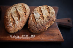 No Knead Bread (TailorTang) Tags: bread food foodphotography stilllife 50mm 5014 homemade baking fresh loaf seededbread olive sunflowerseed chiaseed flaxseed scoring