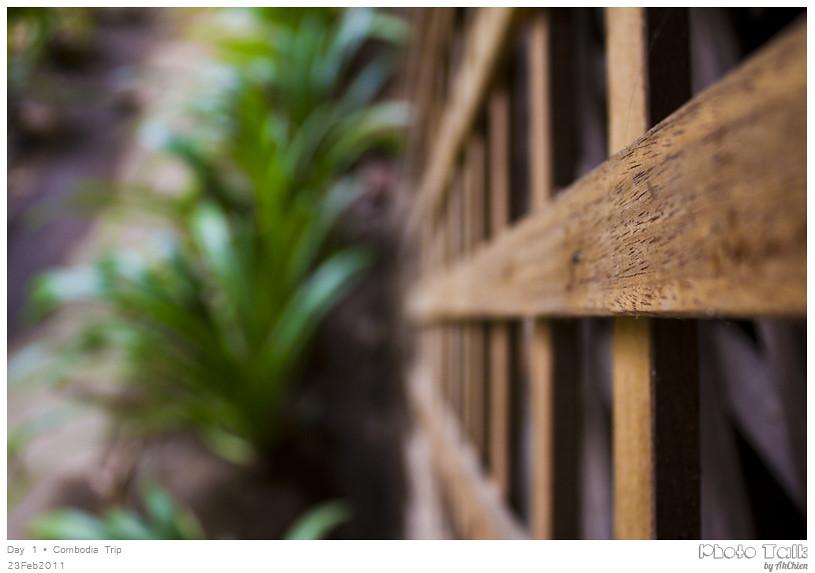 wood · grass