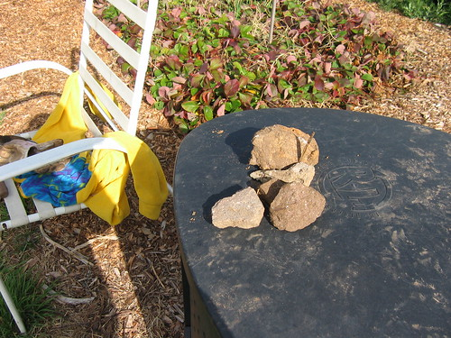 Rocks from the garden bed
