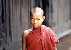Novice, Shan State