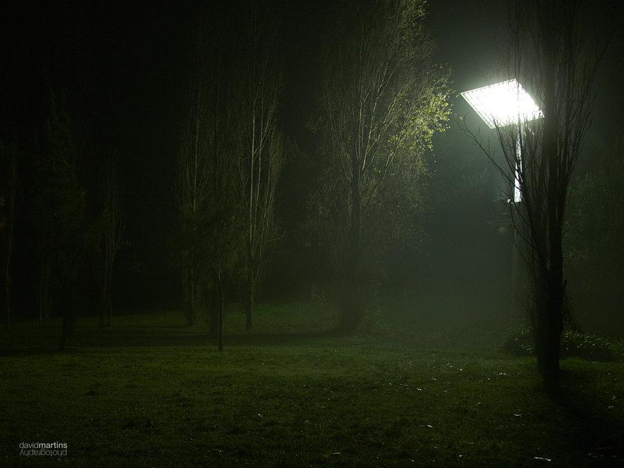 green night by dalexa