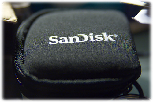 SanDisk memory card pouch
