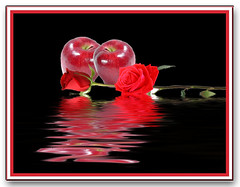 Apples and Roses (ClaraDon) Tags: smorgasbord abigfave onlythebestare