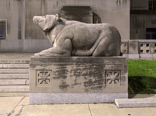 Bear outside of Kiel Auditorium at night, in Saint Louis, Missouri, USA
