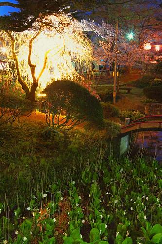 muramatsu park 2