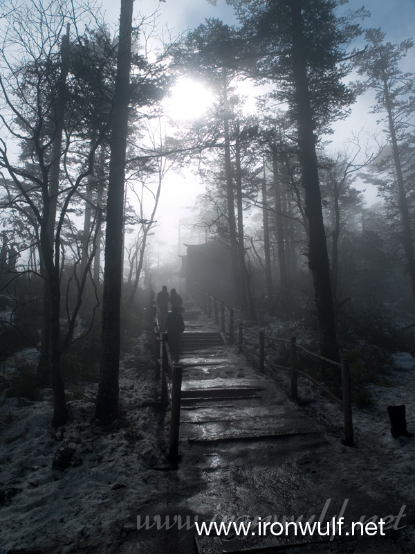 Foggy trail at Emeishan