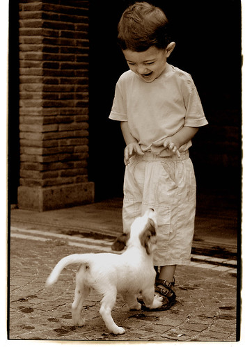 Gio And The Dog