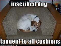 canine geometry (the mad LOLscientist) Tags: dog circle notmine geometry lol livejournal math tangent inscribed gleanings lolscience irishlight ihasahotdog
