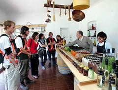 Mendoza lidera la ruta del vino del país