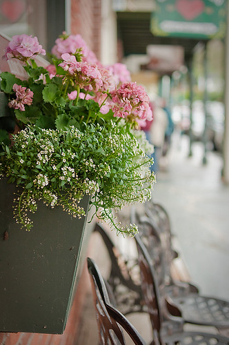 Flowersill