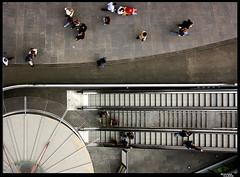 Como pequeas hormigas en su hormiguero de cemento (RomaFlickr) Tags: barcelona lines stairs circle hormigas ant cement ants cemento escaleras circulo ricard zenith hormiga lineas illana cenital romaflickr