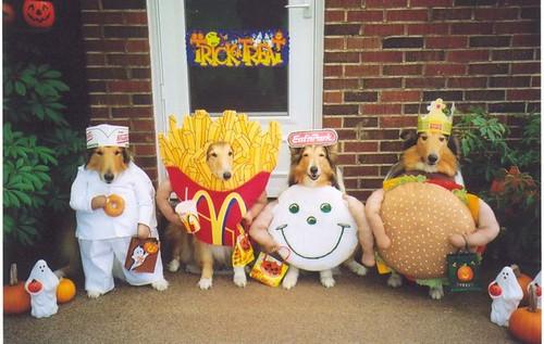 halloween-dog-costumes