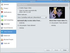 Webcam Shot on Skype for Linux