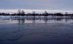 November (heska) Tags: snow ice suomi finland river oulu lumi j joki oulujoki