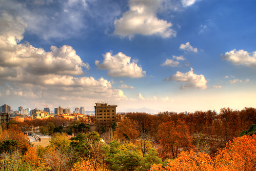 Autumn Colors under the Blue Sky, Tehran, Persia