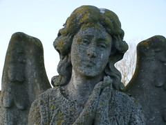 The Angel Statue (familytreeuk) Tags: history cemetery grave statue angel memorial headstone genealogy burial ely yarrow cambridgeshire familytreeukcouk gwendolineenayarrow