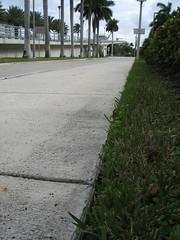 Fertilizer on sidewalk.