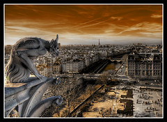 "from the top of the cathedral ""Notre Dame de Paris""... (David-Duchens) Tags: city panorama paris france statue seine photoshop bravo searchthebest cathedral notredame gargoyle cathédrale filter gargoyles chimère chimera hdr gargouille firstquality photomatix outstandingshots bratanesque lightstylus frpix thegoldendreams 3rawshots bonsoirfromparisbynight bauhausrendezvous"
