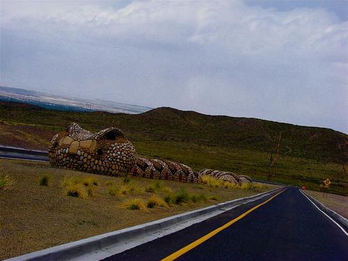 Giant Snake in Mesa Del Sol