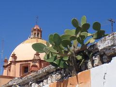 Hombres trabajando - Dolores Hidalgo, México 2008 01618
