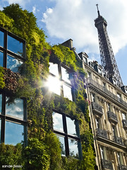 Quai Branly green museum (SANDIE BESSO) Tags: sky cloud sun paris reflection green tower nature museum architecture angle perspective vert muse toureiffel quaibranly aplusphoto
