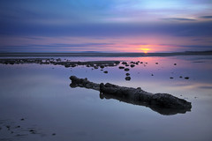 Floating landscapes (Stuart Stevenson) Tags: blue sea sky colour beach water sunrise canon reflections dawn scotland still log sand solitude earlymorning floating scottish peaceful calm tranquil tideout deepblue gloaming canon5dmkii stuartstevenson