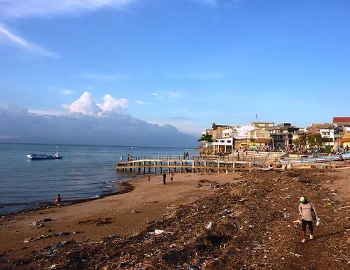 Timor Ouest-Kupang (16)