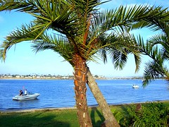 La Jolla. San Diego, CA (Mine Beyaz) Tags: california sea water boat sandiego lajolla minebeyaz