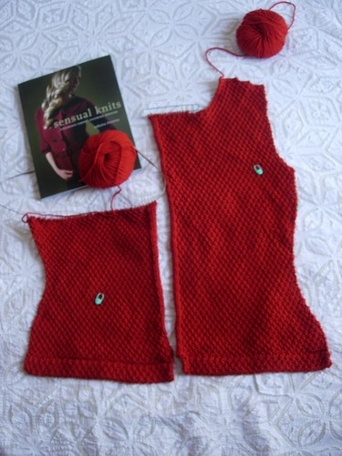 Olga's Sensual Knits jacket