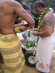 ho'okupu ingredients (Megan Finley) Tags: beach tattoo hawaii traditional culture maui tattoos fourseasons hawaiian tradition cultural tribaltattoo hawaiianculture kimokeokapahulehua hookupu sharkceremony
