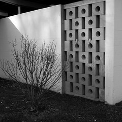 Bad Tiefenbrunnen (So gesehen.) Tags: winter shadow bw plant wall square schweiz switzerland bad cropped zrich grdigital tiefenbrunnen