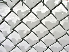 Snow hearts (guajava) Tags: park winter white snow toronto ontario canada detail ice playground fence hearts frozen heart patterns details snowstorm minimal chainlink explore heartshape wintry tacomaartmuseum obliquemind obliquamente smowfall