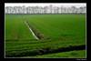 il limite della bonifica ....ovvero una volta era valle (paolo.benetti) Tags: nikon italia campagna ferrara bonifica d80 excellentphotographersaward longastrino