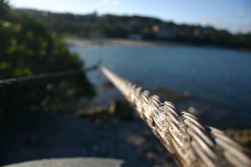 Wire at Mosman Beach.