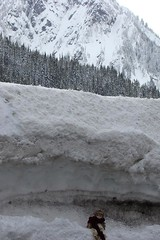 DSC01367.jpgMt. Rainier doll 3-08 (portugita_norton) Tags: snow washington doll mtrainier livingdoll