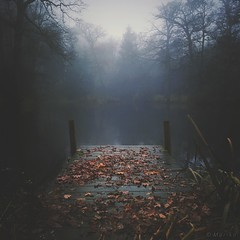 Gloom (M a r i k o) Tags: iphone iphone6s iphoneography iphonephotography mobile mobilephotography mariko square autumn herbst fog nebel foggy mist lake water jetty leaves misty moody aufhausen erding bayern bavaria hipstamatic snapseed mextures