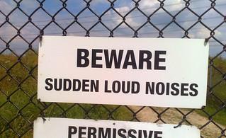 Sudden Loud Noises