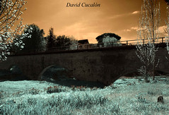 Bridge (David Cucaln) Tags: bridge art digital photoshop puente digitalart infrared pont 2010 fineartphotography santcugat e510 santcugatdelvalles cucalon photographydigitalart davidcucalon