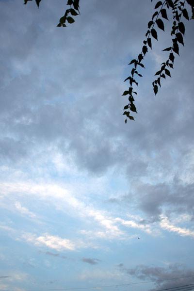 Ciel bleu et nuages gris