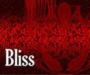 Série Bliss
