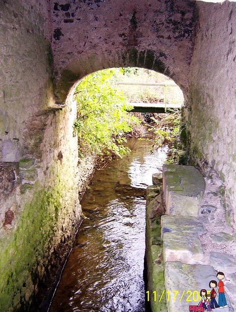 Mill Stream at Hutchinson's Mill, Kells Priory, County Killarney