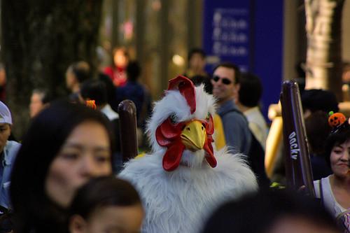 rooster's Halloween