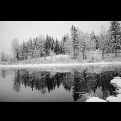~~ winter reflections ~~ (Julien Ratel ( Jll Jnsson )) Tags: winter bw lake reflection tree searchthebest breathtaking themoulinrouge goldenglobe blueribbonwinner eow bwdreams supershot amazingtalent 50faves fpg instantfave goldenmix golddragon abigfave tickettothemoon theexhibit platinumphoto bwphotoaward anawesomeshot aplusphoto superbmasterpiece favemegroup5 diamondclassphotographer flickrdiamond lunarvillage amazingamateur artlegacy theperfectphotographer thegardenofzen thegoldendreams goldstaraward ostrellina damniwish flickrlovers vosplusbellesphotos