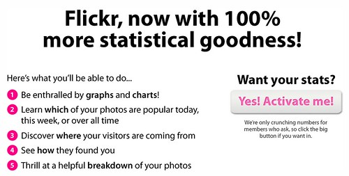Flickr Stats! (for Pro users)