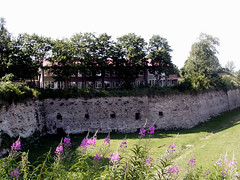 (entish) Tags: summer estonia bastion narva