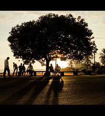 Tree of Life (thefotobaba) Tags: sunset shadow people sunlight tree sony abigfave asrvoresmorremdep