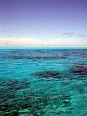 Hotel Bora Bora - Blair Cup 2008 (Super Starfish) Tags: ocean blue sea water race island hotel sailing lagoon resort southpacific sail tropics borabora frenchpolynesia hotelborabora blaircup